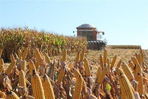 IPEA divulga números positivos da agricultura para 2021